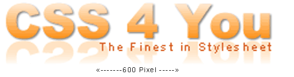 CSS 4 You